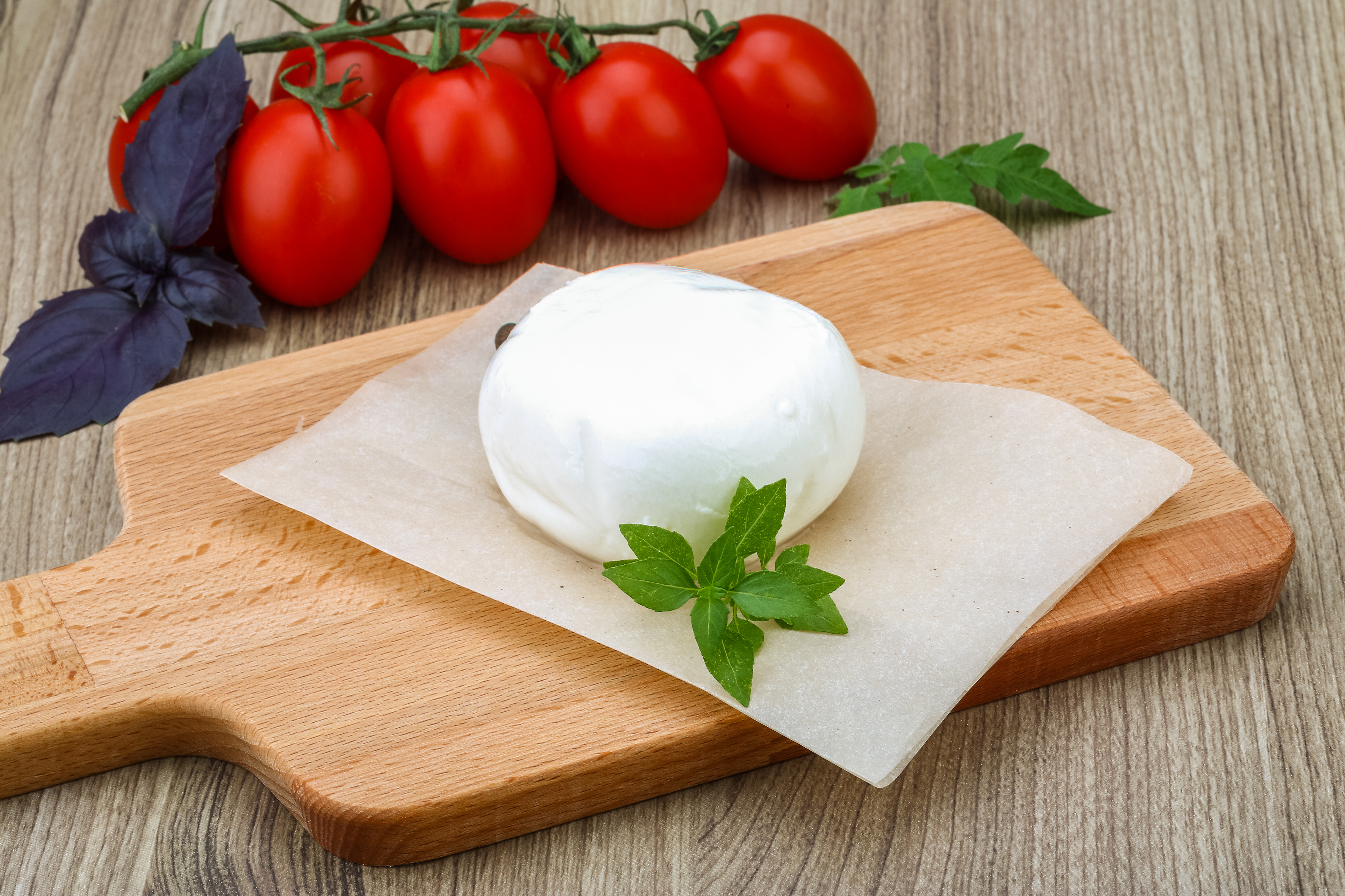 how to make fresh mozzarella recipe